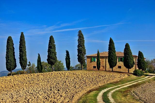 Idézze fel az olaszországi nyaralást mediterrán növényekkel!